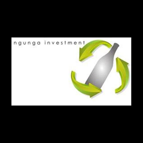 Ngunga Investment
